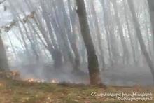"""Пожар, распространившийся с поля под названием """"Кери ял"""" в сторону поля """"Лобуц гомер"""", потушен: сгорело около 15 га травяного покрова"""