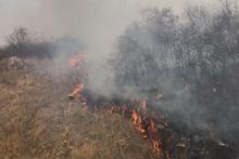 Пожарные-спасатели потушили пожары на травяных участках общей площадью около 60.5 га