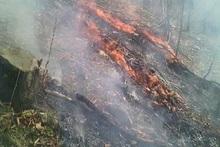 Գանձաքար գյուղում բռնկված հրդեհը մարվել է