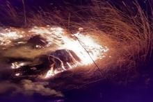 Ձորաշեն գյուղում այրվել է մոտ 20 հա խոտածածկ տարածք