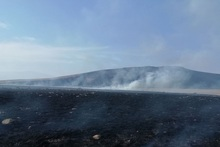 Firefighters extinguished fires broken out in grasslands with a total area of about 226 ha