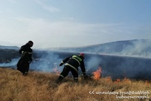 About 220 ha of grass cover was burnt
