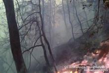 Fire in Gavar town