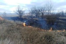 Firefighters extinguished fires broken out in grasslands with a total area of about 1 ha