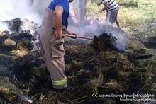 Forage was burnt