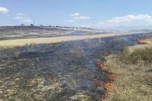 Пожарные-спасатели потушили пожары на травяных участках общей площадью около 3 га