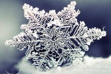 Климатическая характеристика и прогноз погоды на декабрь
