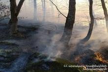 """Пожар, вспыхнувший в поле под названием """"Пат кар"""",  был потушен"""