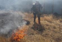Пожарные-спасатели потушили пожары на травяных участках общей площадью около 1.8 га