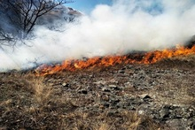 The fire caught in Kachachkut village was extinguished