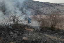 Firefighters extinguished fire broken out in grasslands with a total area of about 5 hectares
