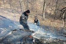 Դիլիջան քաղաքում այրվել է բուսածածկույթ