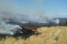 Firefighters extinguished fire broken out in grasslands with a total area of about 59 hectares