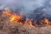 Пожарные-спасатели потушили пожары на травяных участках общей площадью около 2.6 га