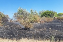 Firefighters extinguished fire broken out in grasslands with a total area of about 6 ha
