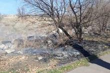 Пожарные-спасатели потушили пожары на травяных участках общей площадью около 55 га