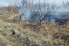 Firefighters extinguished fire broken out in grasslands with a total area of about 15.37 ha