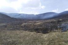 Այրվել է մոտ 60 հա խոտածածկույթ