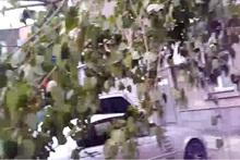 Փրկարարները կտրել են ծառի վնասված ճյուղը