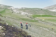Firefighters extinguished fire broken out in grasslands with a total area of about 8 ha