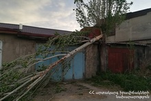 Из-за сильного ветра повредилось дерево