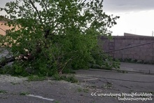Rescuers removed the damaged tree from the roadway