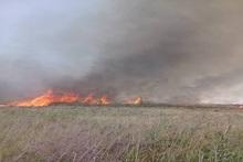 Пожарные-спасатели потушили пожары на травяных участках общей площадью около 2000 квадратных метров