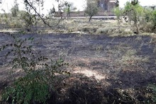 Firefighters extinguished fire broken out in grasslands with a total area of about 19.1 ha
