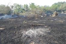 Հրշեջ-փրկարարները մարել են խոտածածկ տարածքներում բռնկված հրդեհները՝ ընդհանուր ընդգրկելով մոտ 5․1 հա տարածք