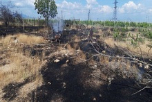 Firefighters extinguished fires broken out in grasslands with a total area of about 11.2 ha