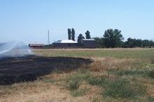 Пожарные-спасатели потушили пожары на травяных участках общей площадью около 42.8 га