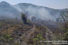В селе Айгедзор сгорело около 8 га травяного покрова