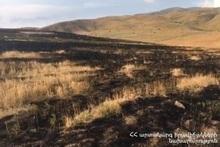 Сгорело около 20 га травяного покрова