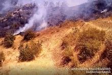 Пожар, вспыхнувший возле села Воротан, потушен