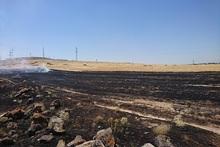 Այրվել է մոտ 15 հա խոտածածկույթ