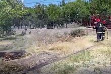 Пожарные-спасатели потушили пожары на травяных участках общей площадью около 8.6 га
