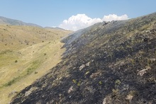 Հրդեհ Գառնի գյուղում․ այրվել է մոտ 20 հա խոտածածկույթ