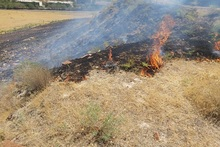 Firefighters extinguished fires broken out in grasslands with a total area of about 14․5 հa