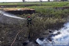 За последнюю неделю были зарегистрированы пожары на травяных участках Еревана и восьми регионов