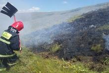 Пожарные-спасатели потушили пожары на территории общей площадью 43.8 га
