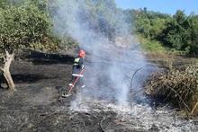 Пожарные-спасатели потушили пожары на территории общей площадью 25.3 га