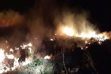 Հրդեհ Էջմիածին քաղաքում․ այրվել է խոտածածկ տարածք