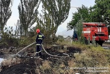 За неделю было зарегистрировано 156 пожаров на травяных участках Еревана и регионов РА