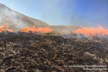 61 fires were registered in the Provinces and Yerevan of RA during the week