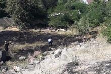 Пожарные-спасатели потушили пожары на территории общей площадью 26.3 га