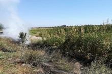 Пожарные-спасатели потушили пожары на территории общей площадью 24 га