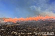 Пожар в селе Аревашат сгорело около 20 га травяного покрова
