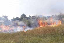 Firefighters extinguished fires broken out in the area of about 31 հa in total