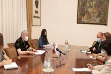 Ֆելիքս Ցոլակյանն  ընդունել է Հայաստանում ՄԱԿ-ի Մանկական հիմնադրամի ներկայացուցչին
