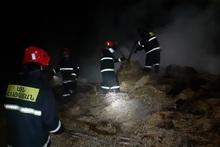 Եղիպատրուշ գյուղում այրվել է 450 հակ անասնակեր